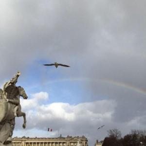arcobaleno su manifestazione
